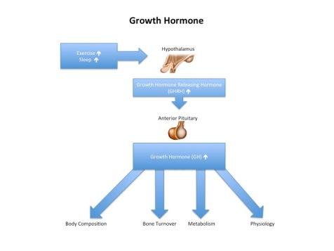growthhormone